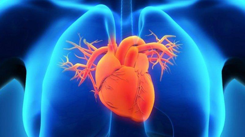 sàng lọc suy tim