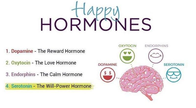 hormone hạnh phúc
