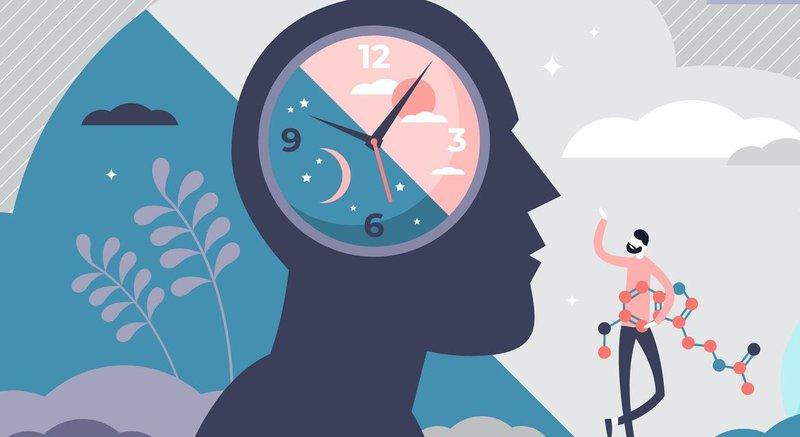 Đồng hồ sinh học của cơ thể