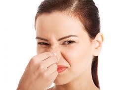 Mũi không phân biệt được mùi điều trị thế nào?