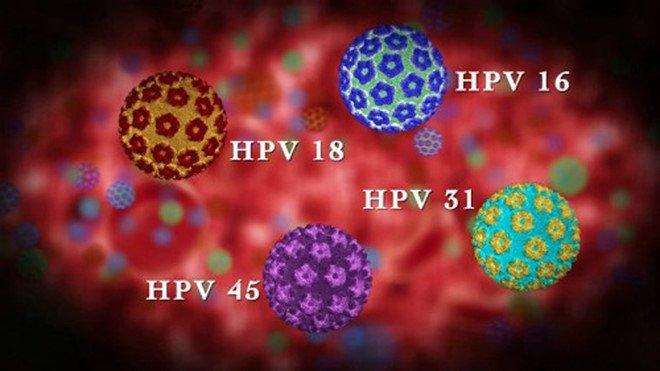 Virus HPV 16