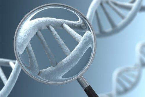 xét nghiệm gen di truyền ở đâu