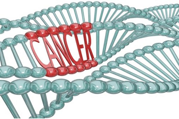 Kiểm soát chu kì tế bào, ung thư, chất ức chế khối u