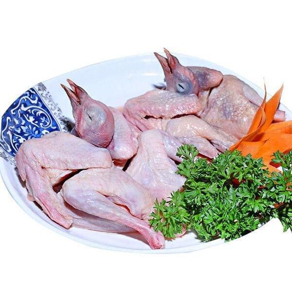Thịt chim bồ câu có tác dụng gì?