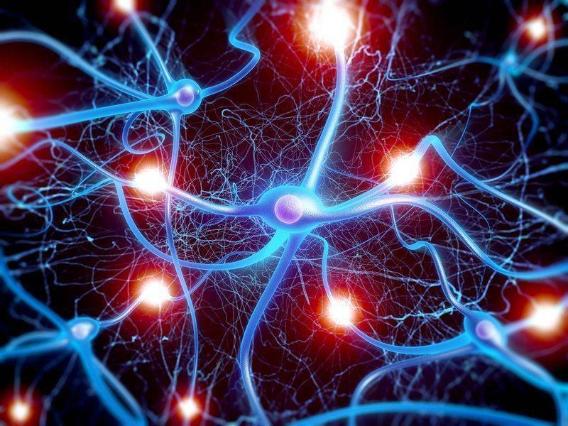 mạng nơron nhân tạo