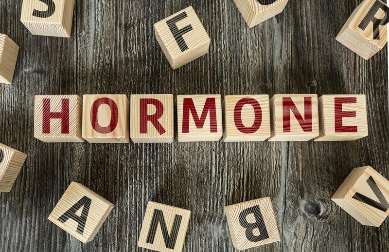 Liệu pháp hormone thời kỳ mãn kinh và nguy cơ ung thư