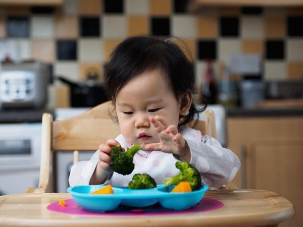 Cho trẻ ăn dặm ngày mấy lần
