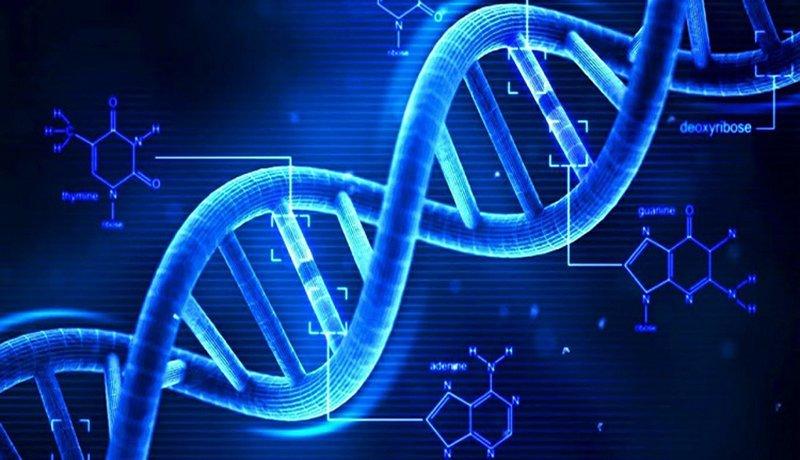 Đột biến gen ATM