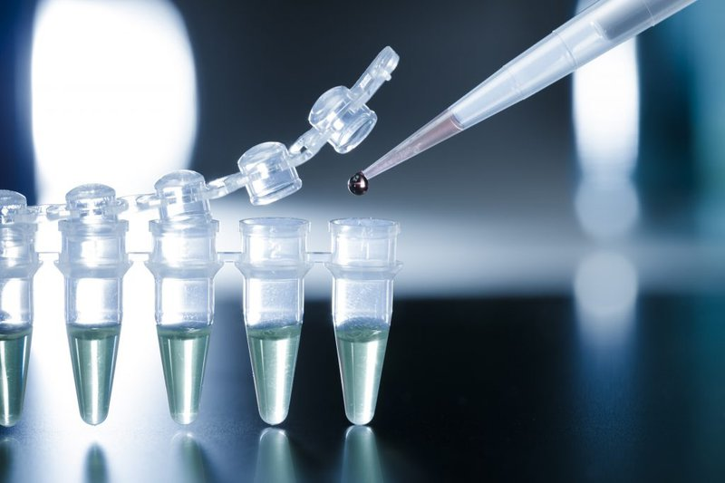 Ghép tế bào gốc trung mô