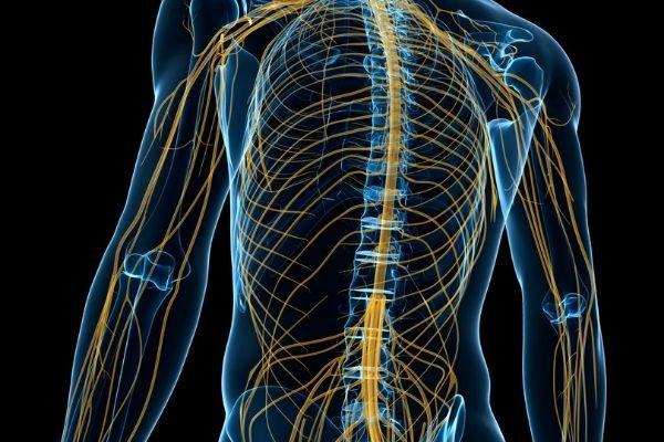 Viêm dây thần kinh ngoại biên điều trị như thế nào?