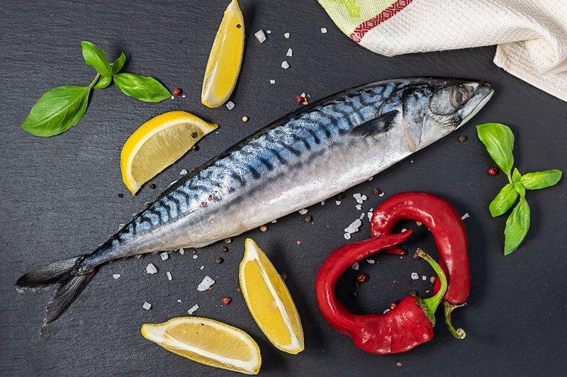 trẻ ăn cá thu có tốt không